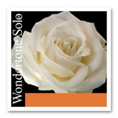 Wondertone Solo 小提琴獨奏套裝 (鋼弦 A )